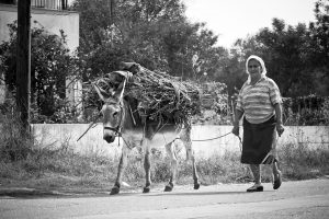 Woman leads donkey carrying sticks down a road in a rural area of Paros island, home to Yria Hotel