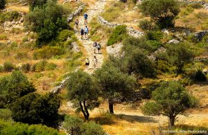 The countryside around Yria Island Boutique Hotel & Spa in Paros is a great place for hiking