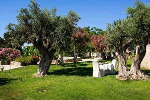 Dining table & chairs set out for lunch in the orchard gardens by Yria Boutique Hotel villa in Paros