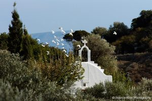Birds fly over a classic Cycladic style church chapel in the countryside of Paros, Greece
