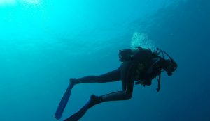 Scuba diving experiences off the coast of Paros, organised by Yria Island Boutique Hotel & Spa