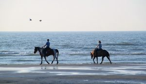 Yria Hotel organises holiday activities for guests, like a horse riding experience on a Paros beach